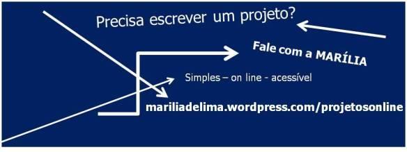 Faça seu projeto comigo.